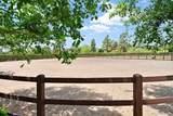 6473 Lago Lindo - Photo 18