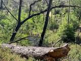 11708 Butte Creek Island Road - Photo 14