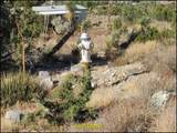 0 Boy Scout Road - Photo 15