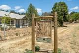 2707 Shasta Road - Photo 4