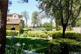 23491 Abbey Glen Place - Photo 41