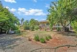19073 Coyle Springs Road - Photo 31