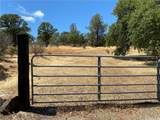 0 Saddle Drive - Photo 7