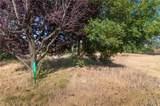5689 Scotty Lake Drive - Photo 7