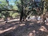 9 Buck Meadow Drive - Photo 5