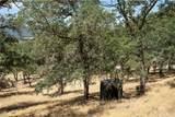 21050 St Helena Creek Road - Photo 16