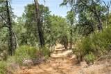 21050 St Helena Creek Road - Photo 18