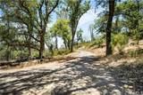 21050 St Helena Creek Road - Photo 21