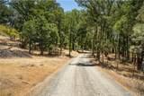 21050 St Helena Creek Road - Photo 3