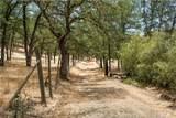 21050 St Helena Creek Road - Photo 4