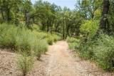 21050 St Helena Creek Road - Photo 8