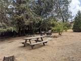 26855 Live Oak Ln - Photo 6