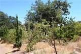 12185 Seigler Canyon Road - Photo 38
