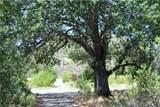 12185 Seigler Canyon Road - Photo 39
