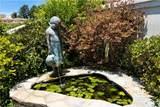 30542 Marbella Vista - Photo 34