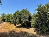 29179 Alicante Drive - Photo 18