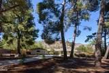 805 Del Oro Drive - Photo 3