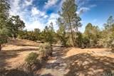 28808 Deep Forest Court - Photo 44