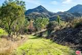 31415 Lobo Canyon Road - Photo 11