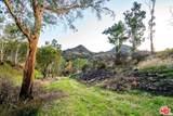 31415 Lobo Canyon Road - Photo 12