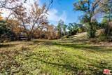 31415 Lobo Canyon Road - Photo 9