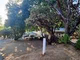 33249 Road 224 - Photo 6