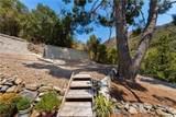 30141 Silverado Canyon Road - Photo 28