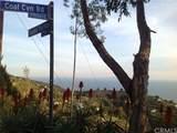 44530360 Coal Canyon Road - Photo 6