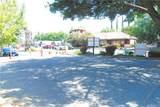 1051 Mangrove Avenue - Photo 13