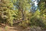 6034 Robin Oak Drive - Photo 25