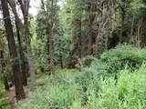 0 Cedar Pines Drive - Photo 2