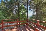 22401 Pine Drive - Photo 20