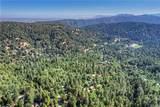 22401 Pine Drive - Photo 24