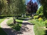 13810 Vista Dorada - Photo 12