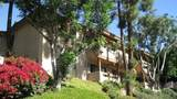 265 Loma Alta Dr - Photo 2