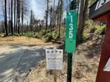 135 Fallen Leaf Drive - Photo 2