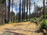 135 Fallen Leaf Drive - Photo 3