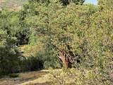 Paseo Al Monte - Photo 11