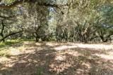 12 Arroyo Sequoia - Photo 11