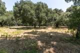 12 Arroyo Sequoia - Photo 14