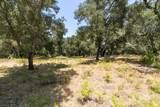 12 Arroyo Sequoia - Photo 15