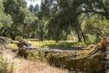 12 Arroyo Sequoia - Photo 5