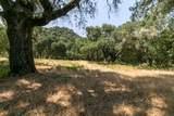 12 Arroyo Sequoia - Photo 6