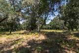 12 Arroyo Sequoia - Photo 8