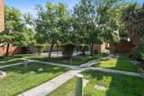 6151 Camino Verde Drive - Photo 14