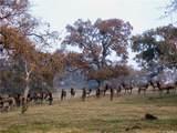 0 Black Oaks Ranch - Photo 30