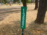 13882 Andover Drive - Photo 3