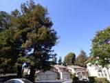 38254 Redwood Terrace - Photo 9