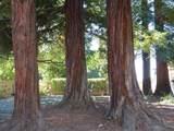 38254 Redwood Terrace - Photo 10