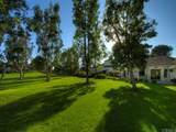 28427 Buena Vista - Photo 27